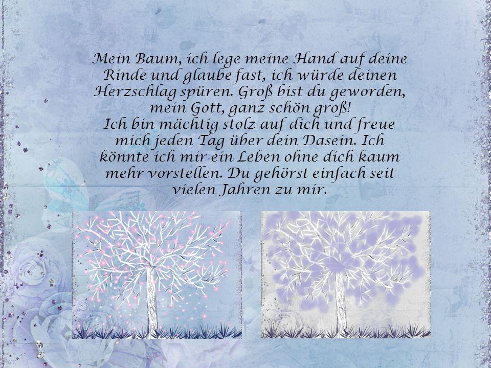 Mein Baum, ich lege meine Hand auf deine Rinde und glaube fast, ich würde deinen Herzschlag spüren. Groß bist du geworden, mein Gott, ganz schön groß!