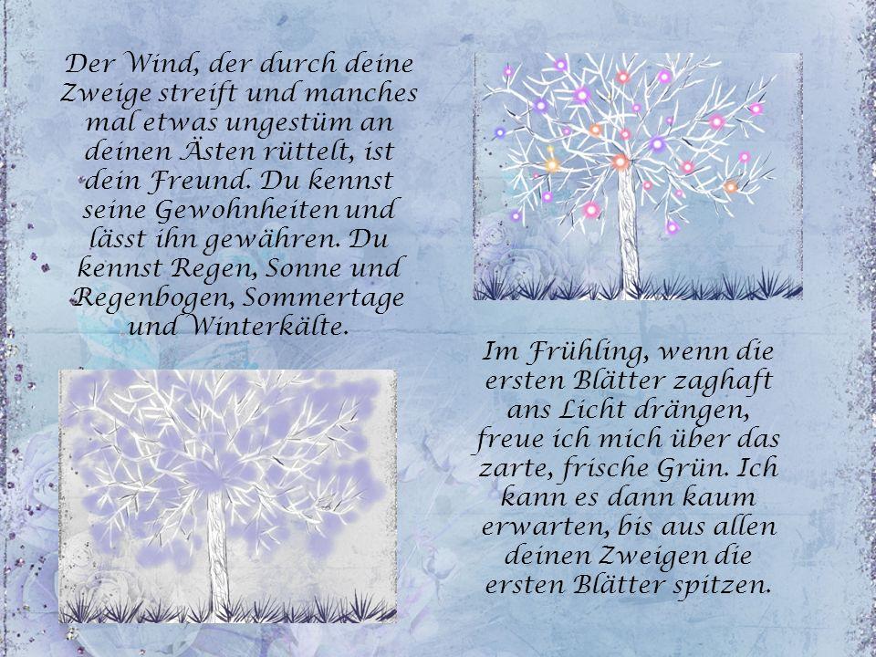 Der Wind, der durch deine Zweige streift und manches mal etwas ungestüm an deinen Ästen rüttelt, ist dein Freund. Du kennst seine Gewohnheiten und lässt ihn gewähren. Du kennst Regen, Sonne und Regenbogen, Sommertage und Winterkälte.