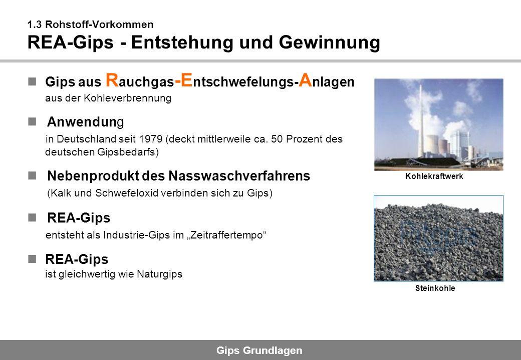 1.3 Rohstoff-Vorkommen REA-Gips - Entstehung und Gewinnung