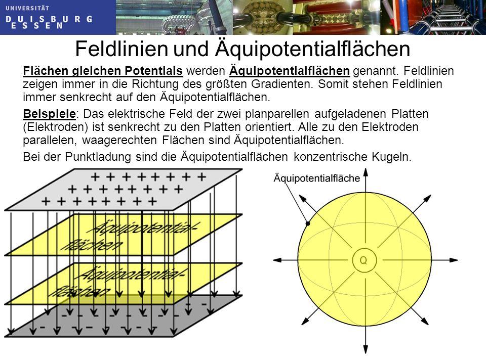 Feldlinien und Äquipotentialflächen