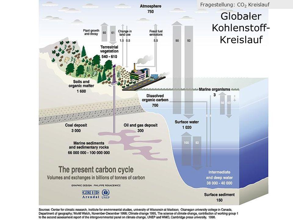 Globaler Kohlenstoff-Kreislauf