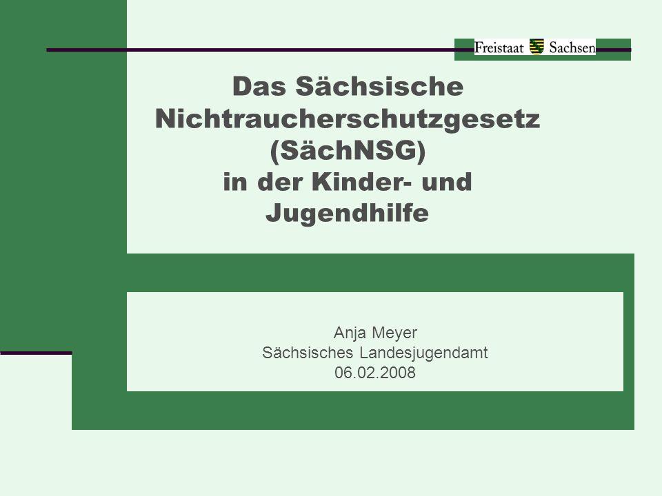 Anja Meyer Sächsisches Landesjugendamt 06.02.2008