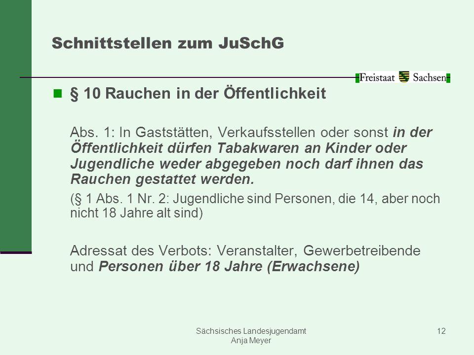 Schnittstellen zum JuSchG