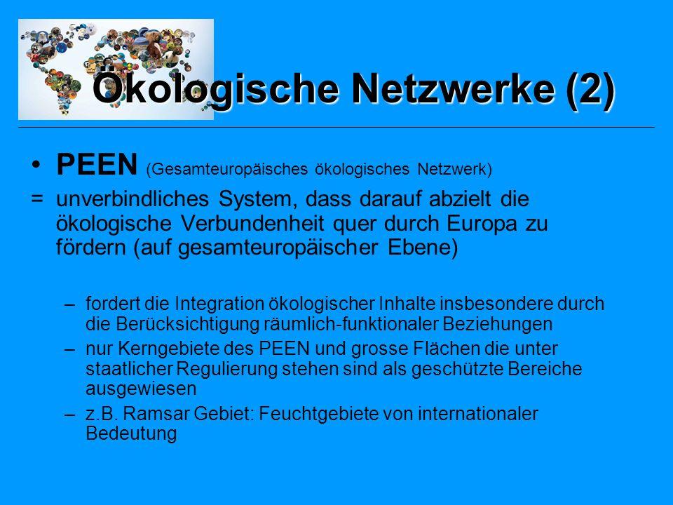 Ökologische Netzwerke (2)