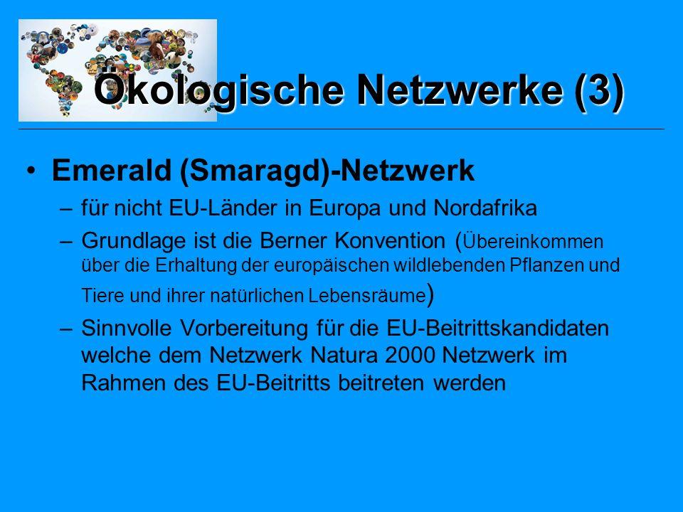 Ökologische Netzwerke (3)