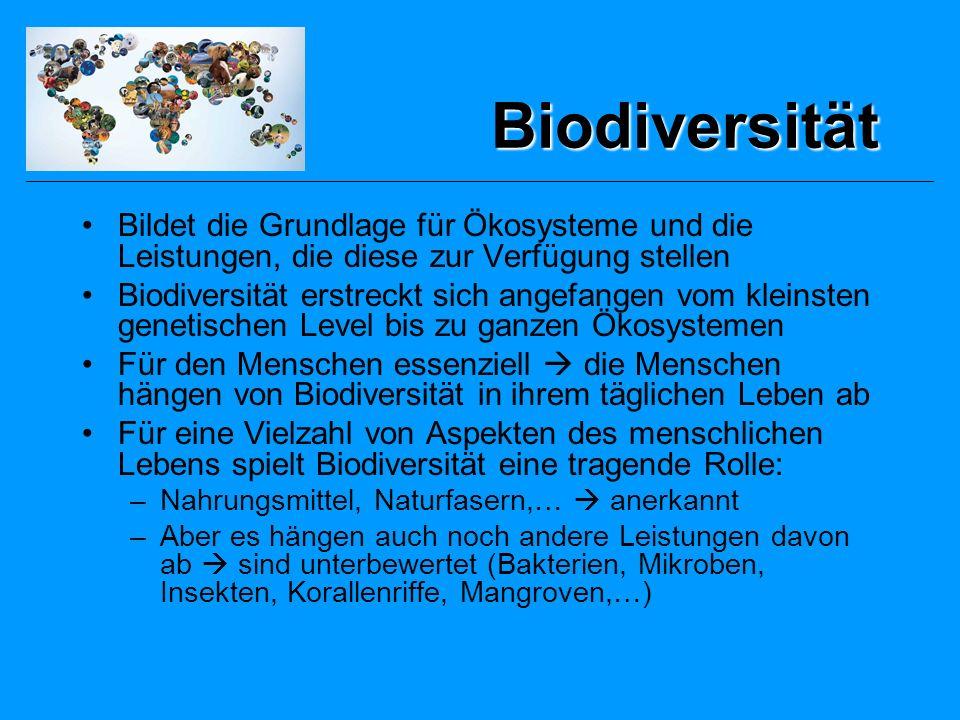 Biodiversität Bildet die Grundlage für Ökosysteme und die Leistungen, die diese zur Verfügung stellen.