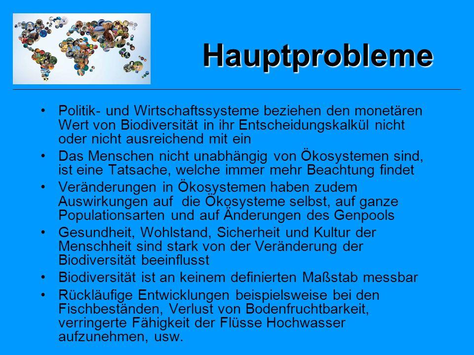 Hauptprobleme