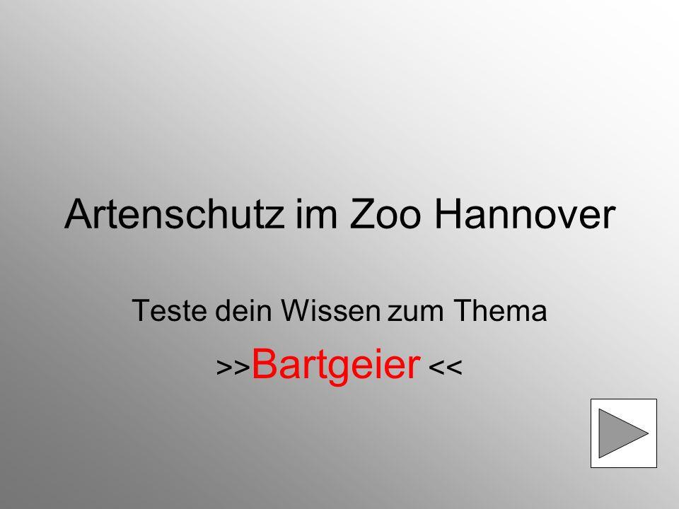 Artenschutz im Zoo Hannover