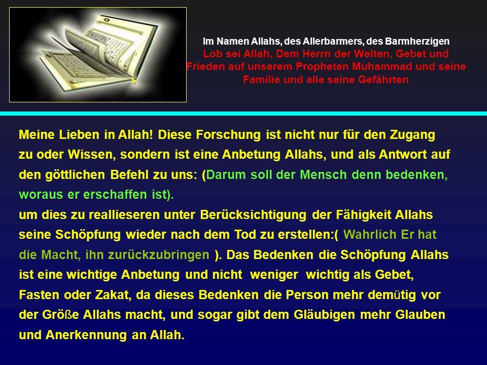 Im Namen Allahs, des Allerbarmers, des Barmherzigen