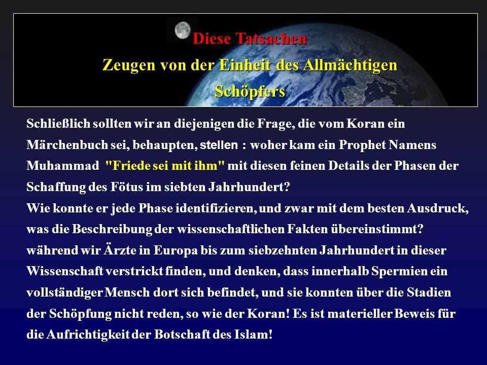 Diese Tatsachen Zeugen von der Einheit des Allmächtigen Schöpfers