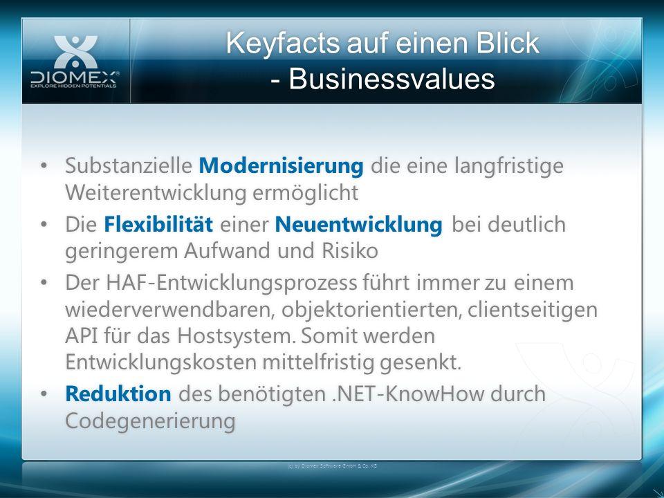 Keyfacts auf einen Blick - Businessvalues