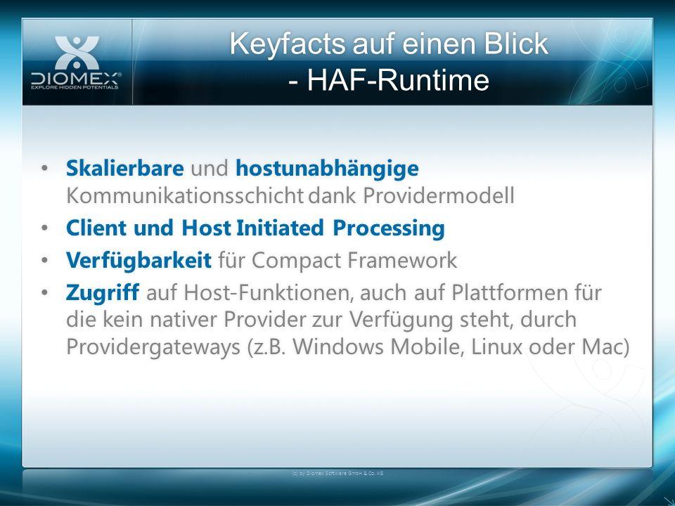 Keyfacts auf einen Blick - HAF-Runtime