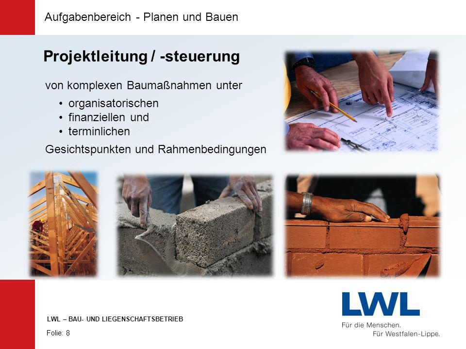 Projektleitung / -steuerung