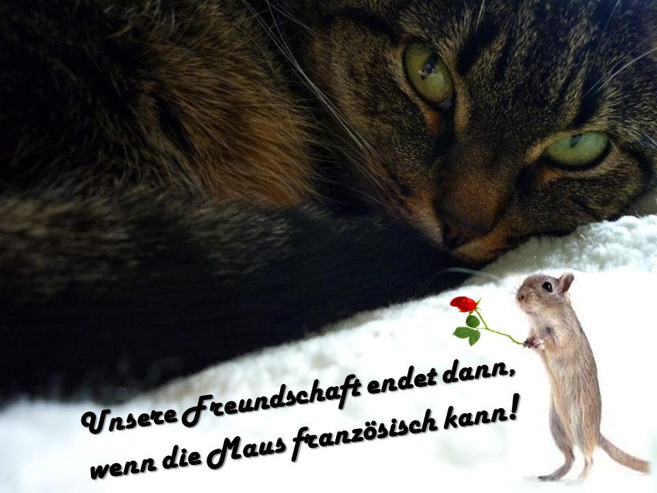 Unsere Freundschaft endet dann, wenn die Maus französisch kann!