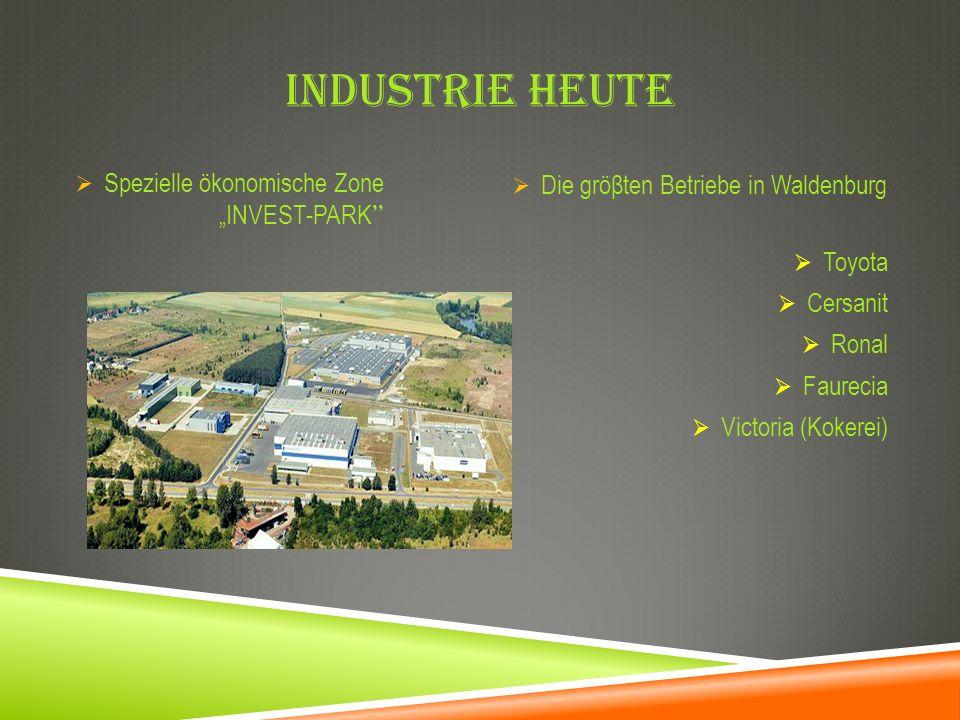 """Industrie heute Spezielle ökonomische Zone """"INVEST-PARK"""