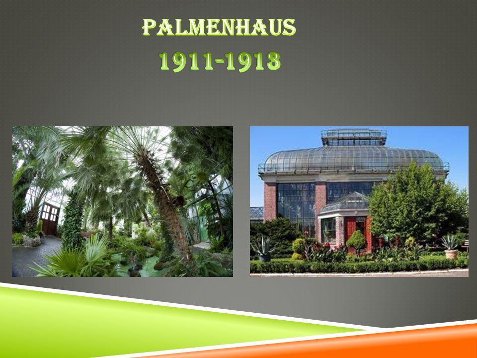 Palmenhaus 1911-1913