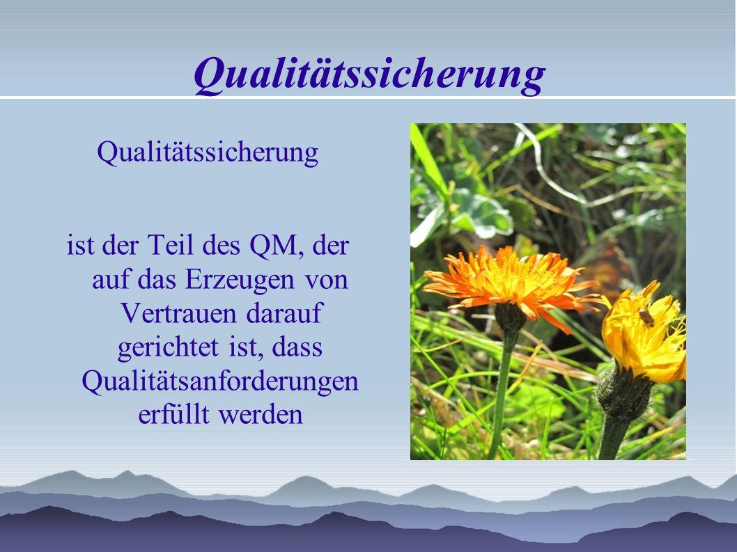 Qualitätssicherung Qualitätssicherung