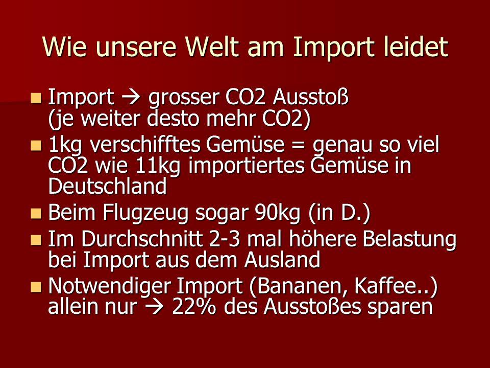 Wie unsere Welt am Import leidet
