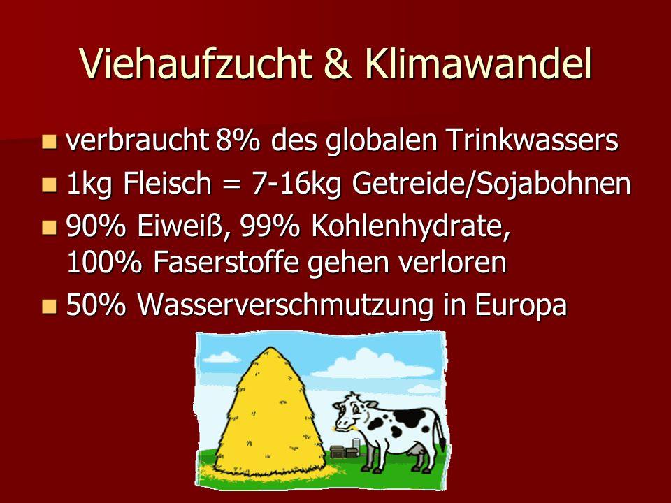 Viehaufzucht & Klimawandel