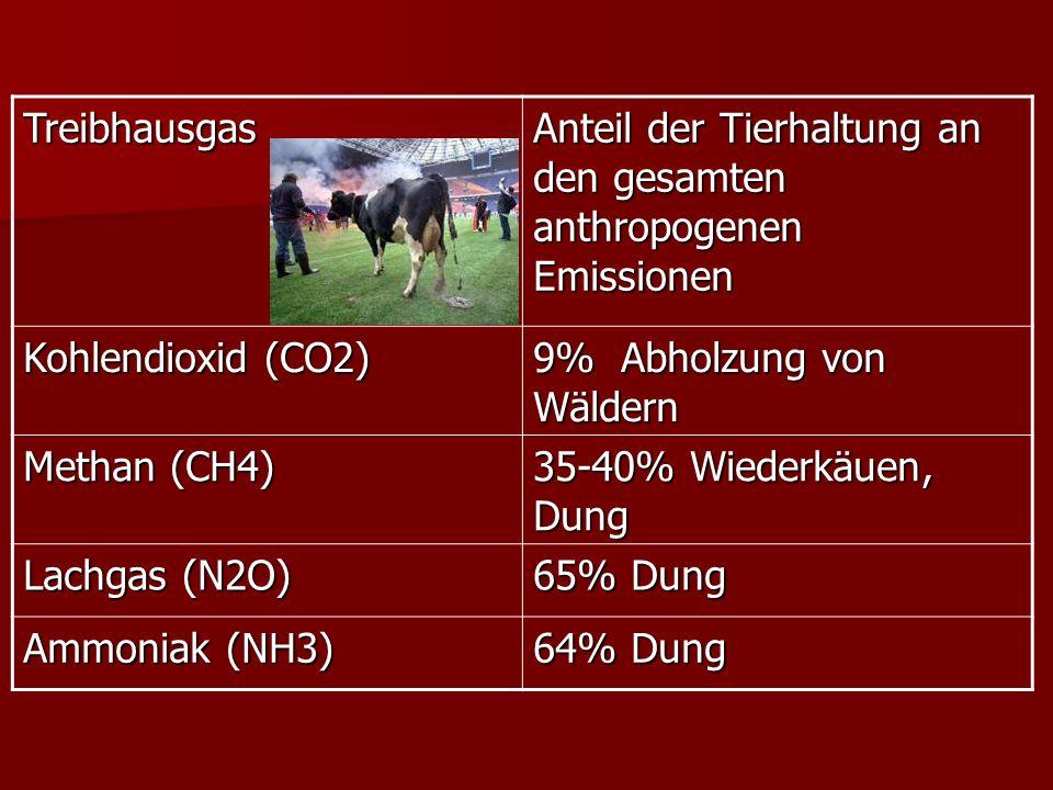 Treibhausgas Anteil der Tierhaltung an den gesamten anthropogenen Emissionen. Kohlendioxid (CO2) 9% Abholzung von Wäldern.