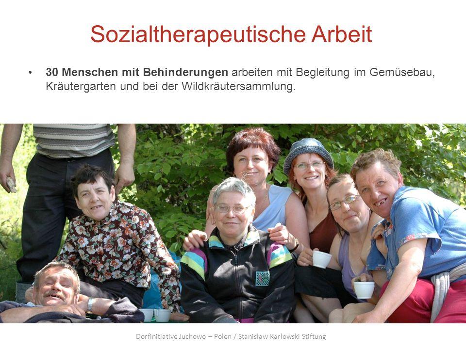 Sozialtherapeutische Arbeit