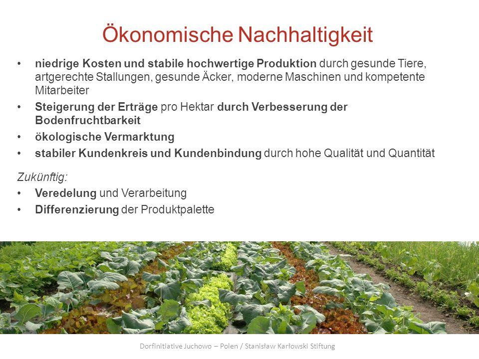 Ökonomische Nachhaltigkeit