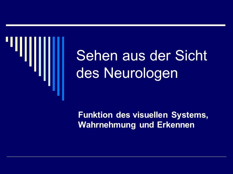Sehen aus der Sicht des Neurologen