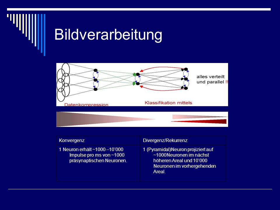Bildverarbeitung Konvergenz Divergenz/Rekurrenz