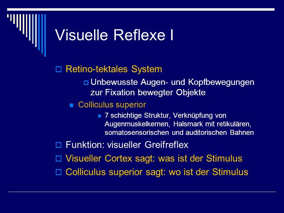 Visuelle Reflexe I Retino-tektales System