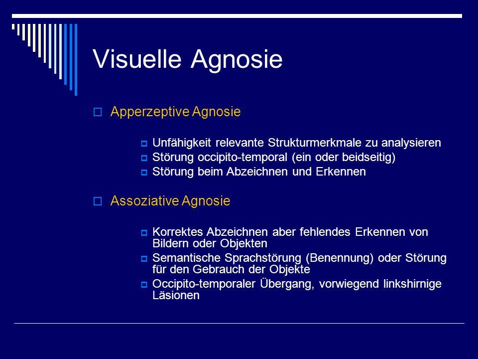 Visuelle Agnosie Apperzeptive Agnosie Assoziative Agnosie