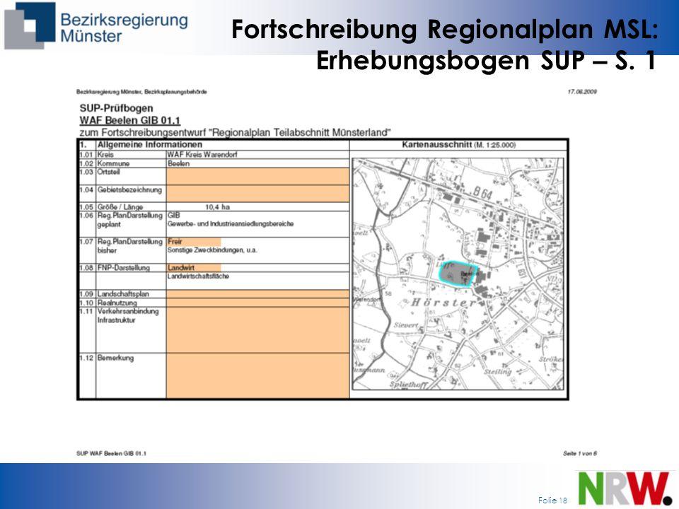 Fortschreibung Regionalplan MSL: Erhebungsbogen SUP – S. 1