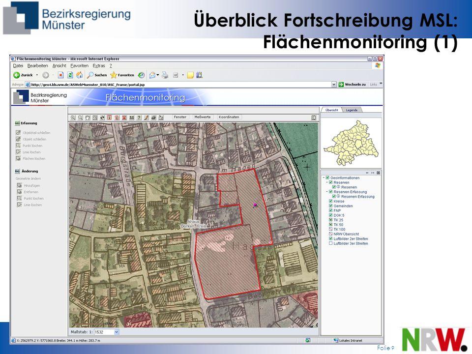 Überblick Fortschreibung MSL: Flächenmonitoring (1)