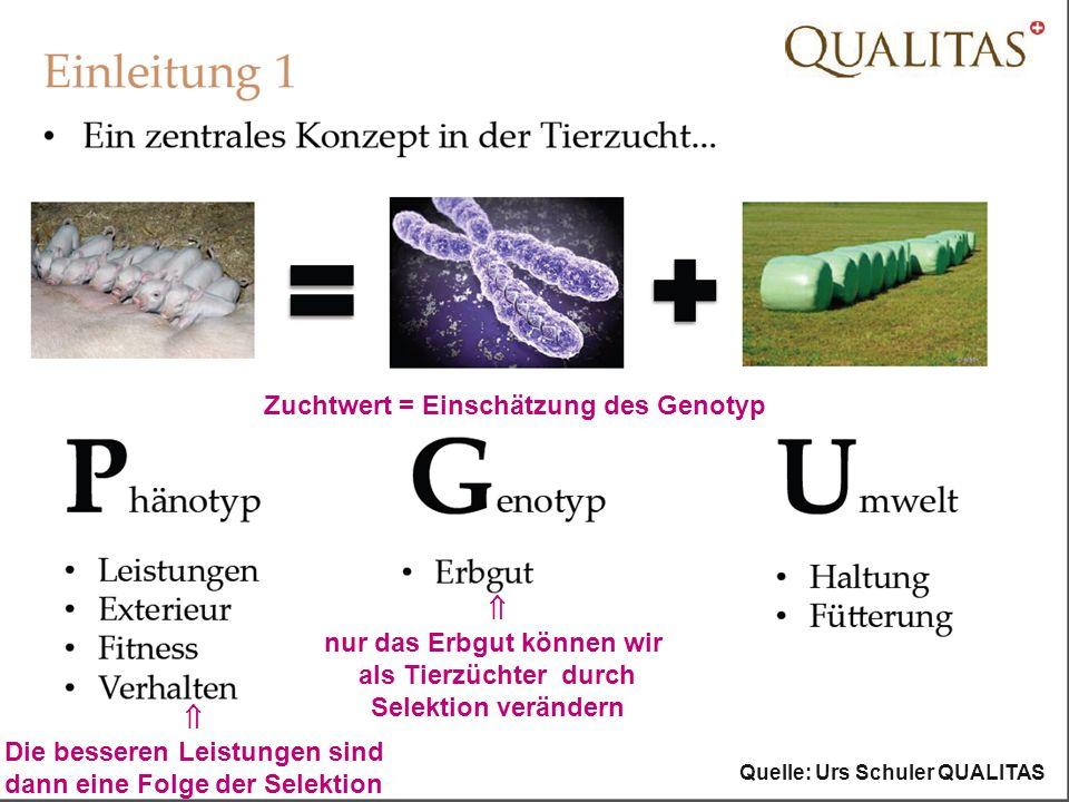 Zuchtwert = Einschätzung des Genotyp