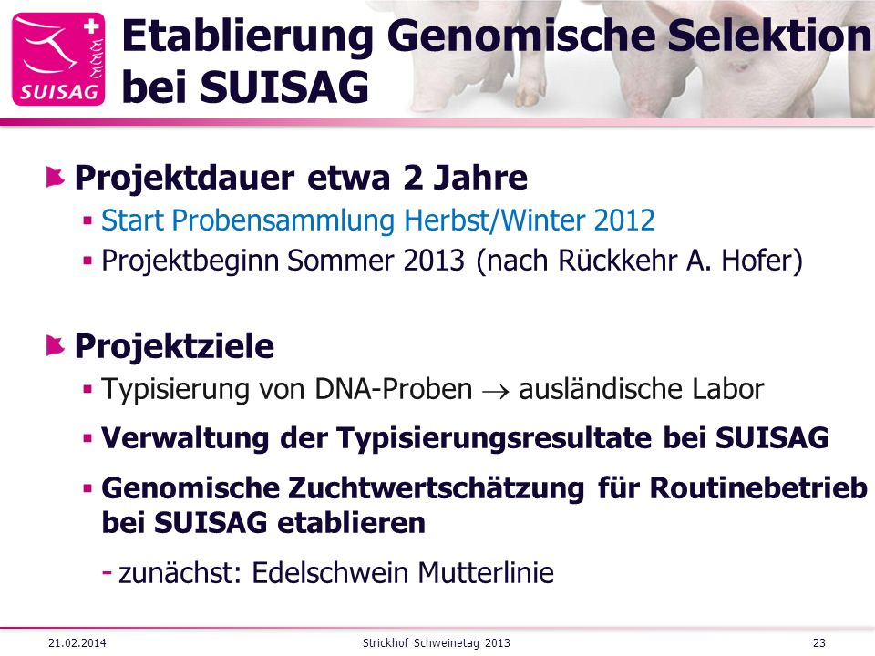 Etablierung Genomische Selektion bei SUISAG