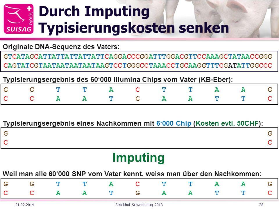 Durch Imputing Typisierungskosten senken