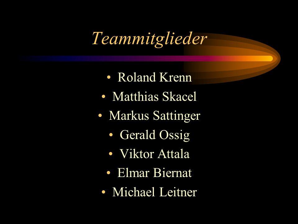 Teammitglieder Roland Krenn Matthias Skacel Markus Sattinger