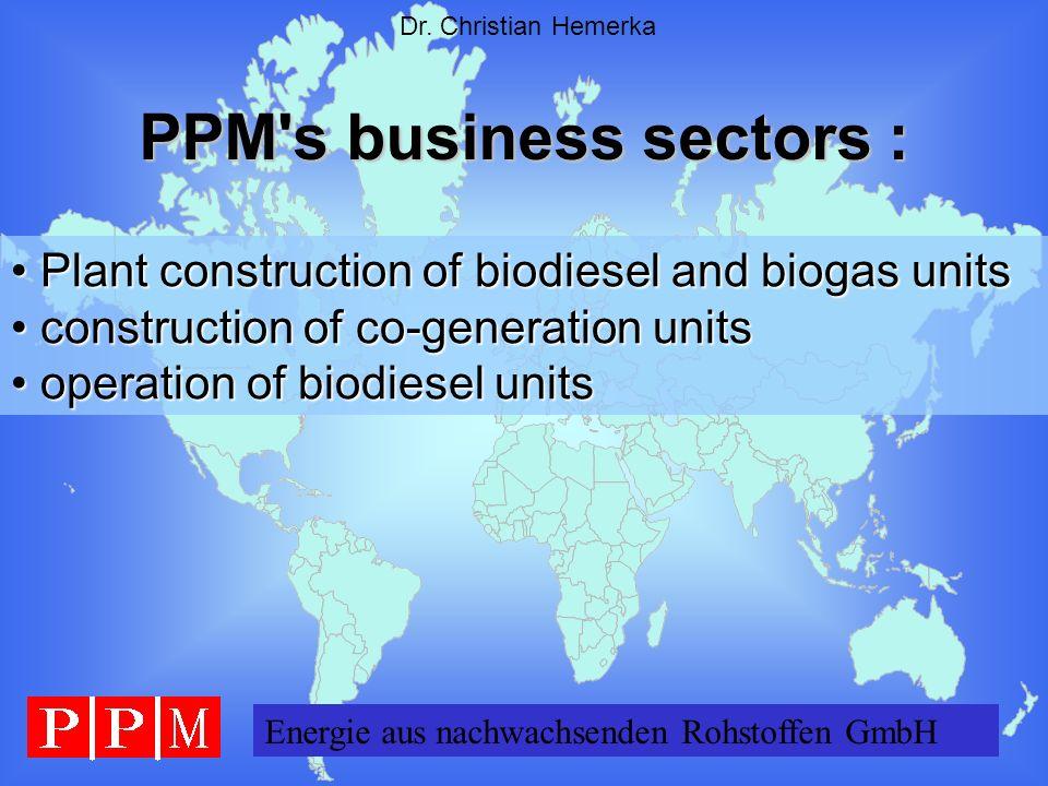 PPM s business sectors :