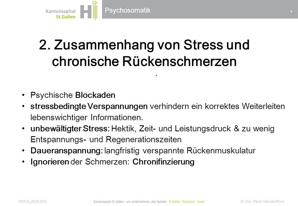 2. Zusammenhang von Stress und chronische Rückenschmerzen
