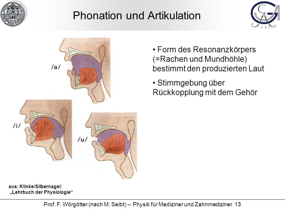 Phonation und Artikulation