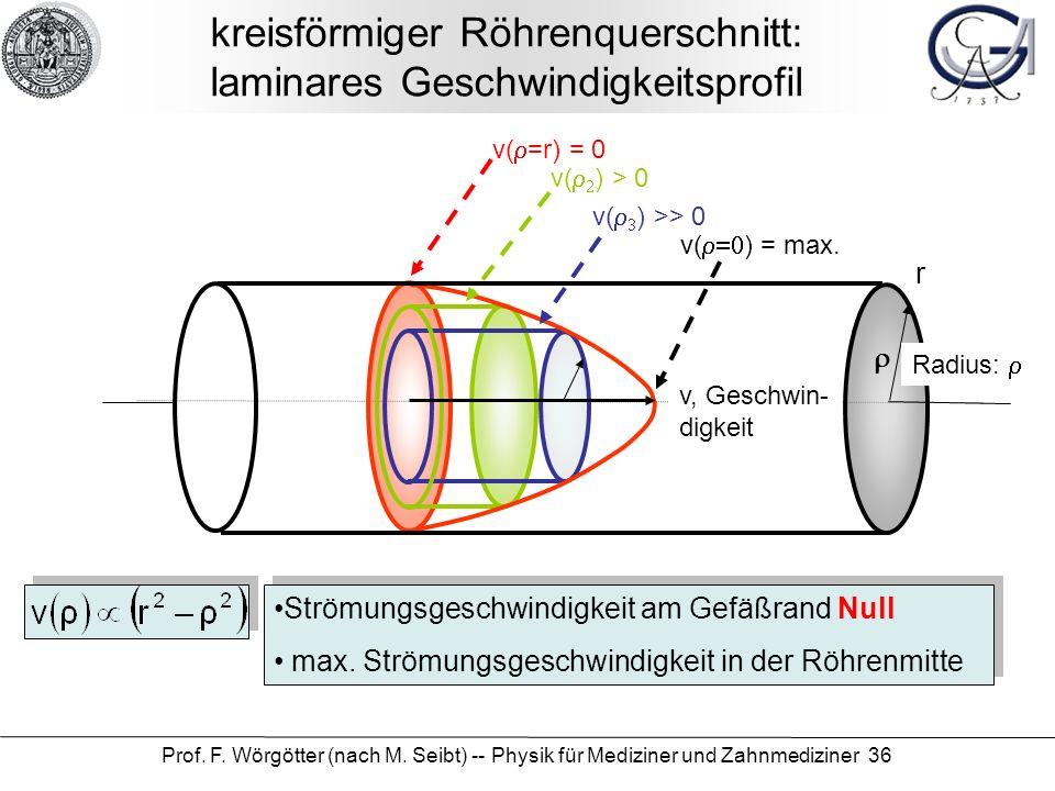 kreisförmiger Röhrenquerschnitt: laminares Geschwindigkeitsprofil