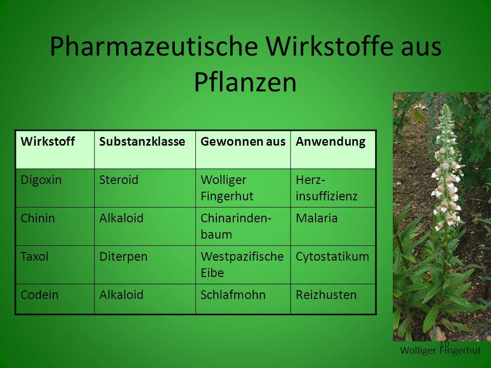 Pharmazeutische Wirkstoffe aus Pflanzen