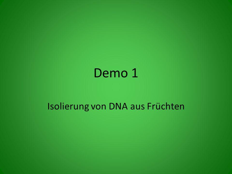 Isolierung von DNA aus Früchten