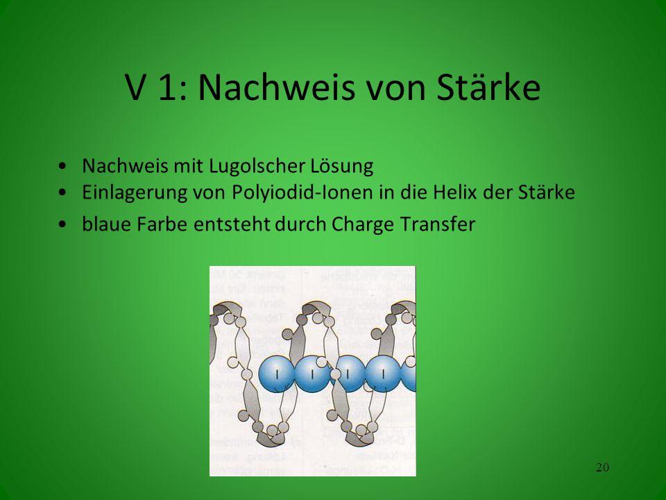 V 1: Nachweis von Stärke Nachweis mit Lugolscher Lösung