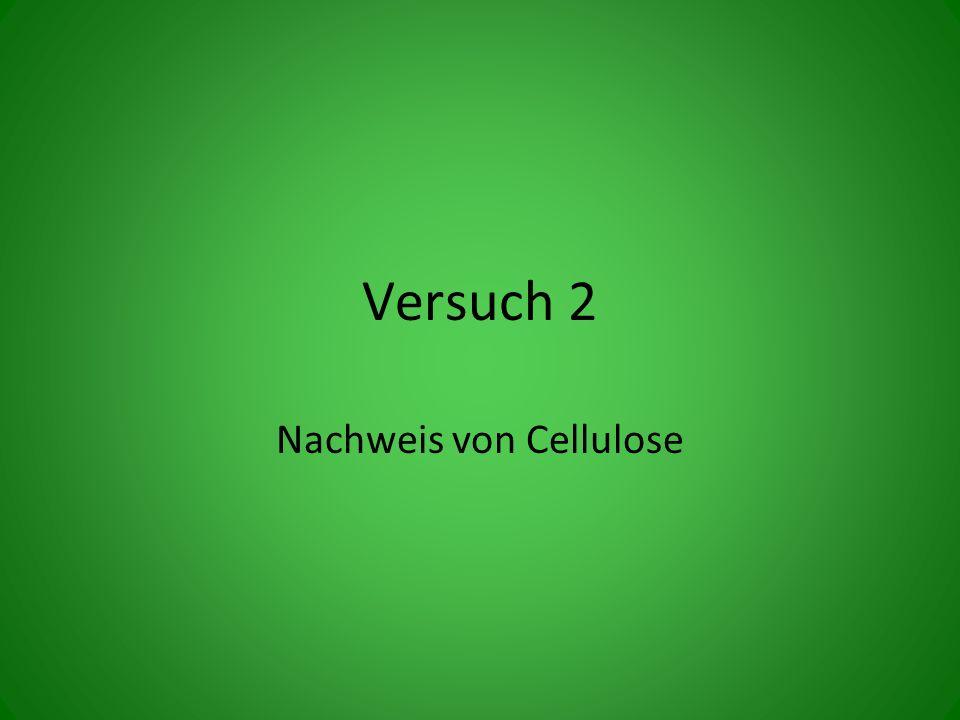 Nachweis von Cellulose