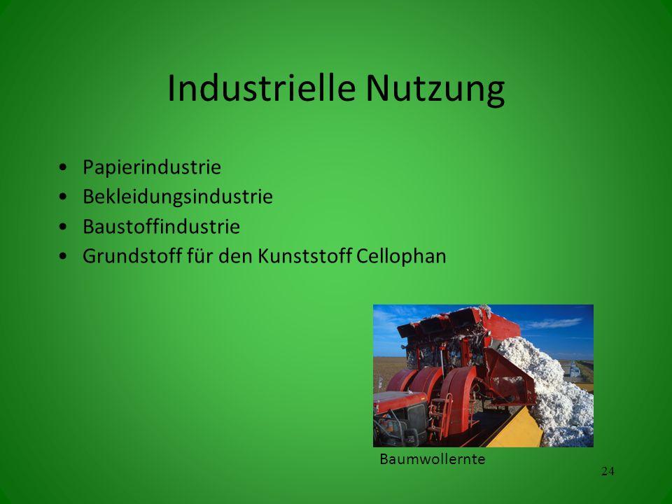 Industrielle Nutzung Papierindustrie Bekleidungsindustrie