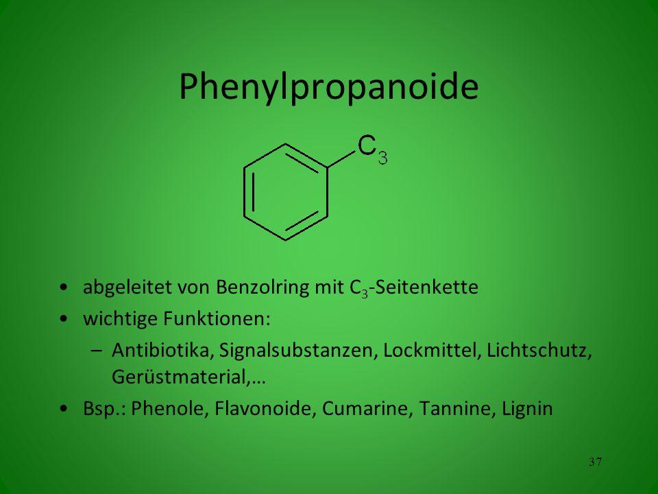 Phenylpropanoide abgeleitet von Benzolring mit C3-Seitenkette