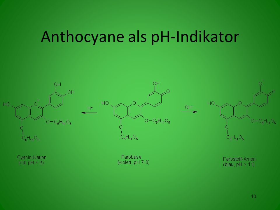 Anthocyane als pH-Indikator