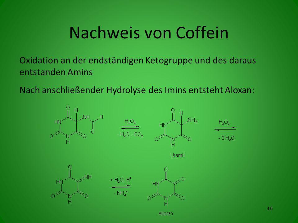 Nachweis von Coffein Oxidation an der endständigen Ketogruppe und des daraus entstanden Amins.