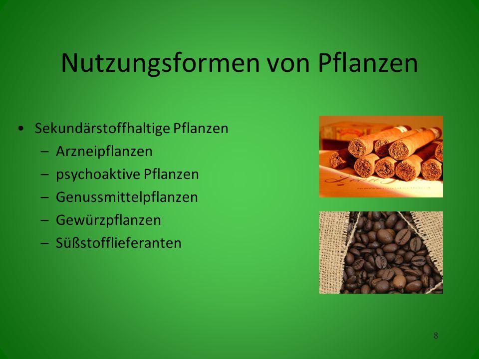 Nutzungsformen von Pflanzen