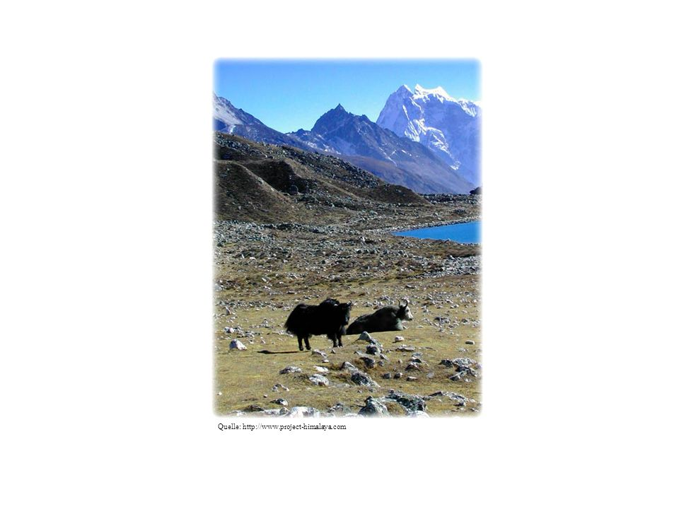 Quelle: http://www.project-himalaya.com